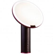 Зеркало для макияжа Xiaomi Amiro Daylight Mirror (AML005B)